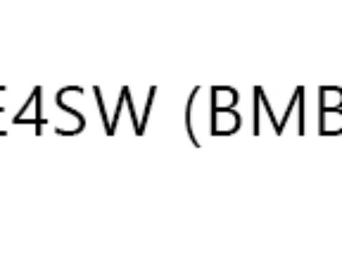 LE4SW (BMBF) Regionale Technologieplattform für soziale, semantische Kollaboration (2009 – 2011, participant)
